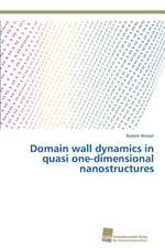 Domain wall dynamics in quasi one-dimensional nanostructures