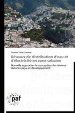 Réseaux de distribution d'eau et d'électricité en zone urbaine