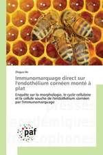 Immunomarquage direct sur l'endothélium cornéen monté à plat