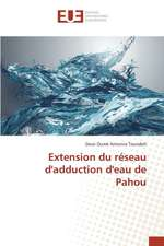 Extension Du Reseau D'Adduction D'Eau de Pahou:  Elaboration D'Un Cctp