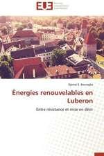 Energies Renouvelables En Luberon:  Mesure Et Determinants