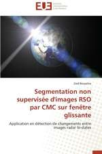 Segmentation Non Supervisee D'Images Rso Par CMC Sur Fenetre Glissante:  Analyse Du Roman Et Du Film