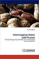 Intercropping Maize with Peanut