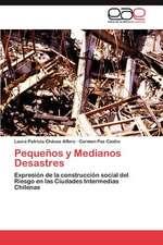 Pequenos y Medianos Desastres:  Transgresion O Error?