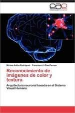 Reconocimiento de Imagenes de Color y Textura:  Discapacidad y Universidad