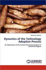 Dynamics of the Technology Adoption Process