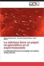 La Aldolasa Tiene Un Papel No-Glucolitico En El Espermatozoide:  Una Civilizacion Occidental E Hispanica