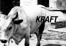 Kraft - Moc