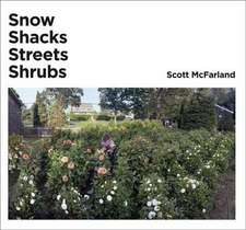 Scott McFarland:  Snow, Shacks, Streets, Shrubs