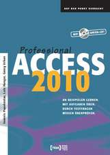 Access 2010 Professional Buch