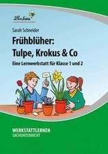 Frühblüher: Tulpe, Krokus & Co (PR)