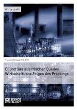 Öl und Gas aus frischen Quellen.Wirtschaftliche Folgen des Frackings