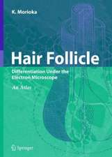 Hair Follicle: Differentiation under the Electron Microscope - An Atlas