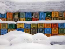 COLORS IN SNOW