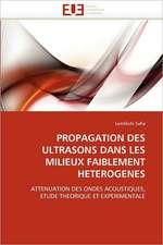 Propagation Des Ultrasons Dans Les Milieux Faiblement Heterogenes