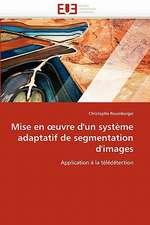 Mise En Uvre D'Un Systeme Adaptatif de Segmentation D'Images:  Approche Par La Theorie de L Auto-Efficacite