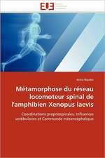Métamorphose du réseau locomoteur spinal de l'amphibien Xenopus laevis