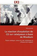 La Reaction D''Oxydation de Co Sur Catalyseurs a Base de Rhodium:  Etude Asymptotique Et Simulation