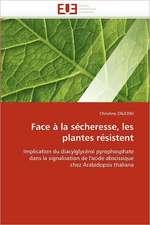 Face à la sécheresse, les plantes résistent