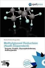 METHYLGLYOXAL REDUCTASE (NADH-