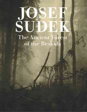 Josef Sudek:  Ancient Forest of the Beskids