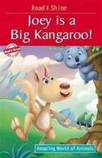 Joey is a Big Kangaroo!