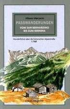 Passwanderungen vom S.BERNARDINO bis zum Bernina