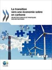 La Transition Vers Une Conomie Sobre En Carbone:  Objectifs Publics Et Pratiques Des Entreprises