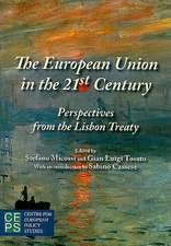 The European Union in the 21st Century: Perspectives from the Lisbon Treaty