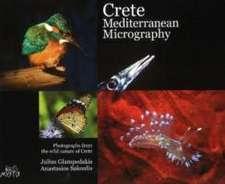 Crete Mediterranean Micrography