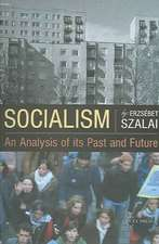 Socialism: An Analysis of Its Past and Future