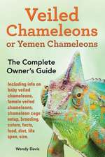 Veiled Chameleons or Yemen Chameleons as Pets. Info on Baby Veiled Chameleons, Female Veiled Chameleons, Chameleon Cage Setup, Breeding, Colors, Facts:  Find the Courage to Do What You Love