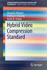 Hybrid Video Compression Standard