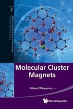 Molecular Cluster Magnets